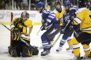 hockey-89609_640